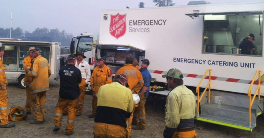 Helping in the Bushfire Crisis: How You Can Assist?