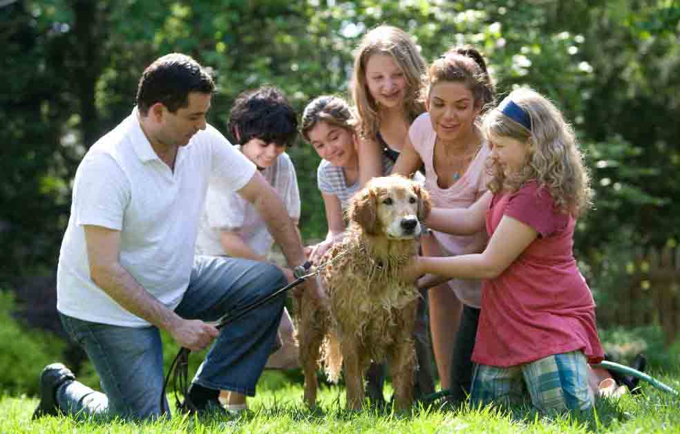 Helping Your Blended Family Thrive, Not Just Survive